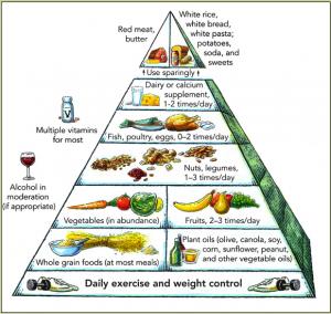 Пирамида из Гарварда